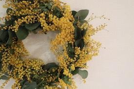 春の香りを運ぶフレッシュなミモザリース作り